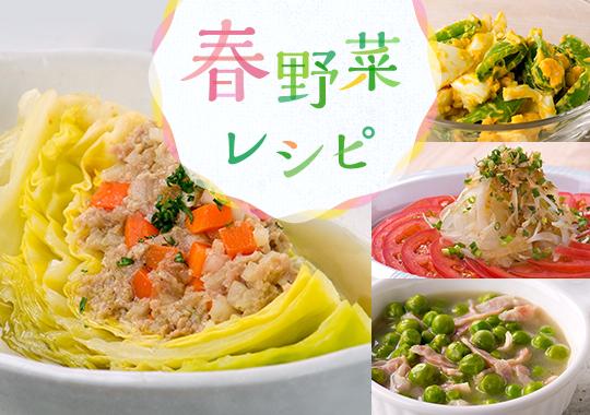 春野菜レシピ特集