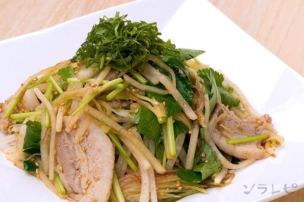 大根と香味野菜たっぷりの豚肉サラダ_main1