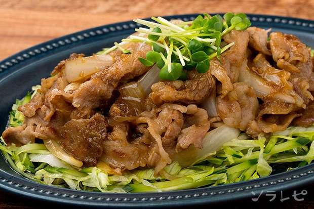 豚肉の生姜焼きサラダ風_main1