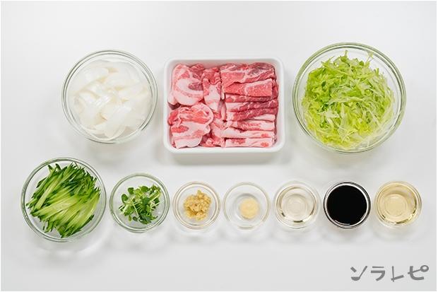豚肉の生姜焼きサラダ風_main3