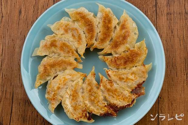 キャベツと筍の餃子_main2