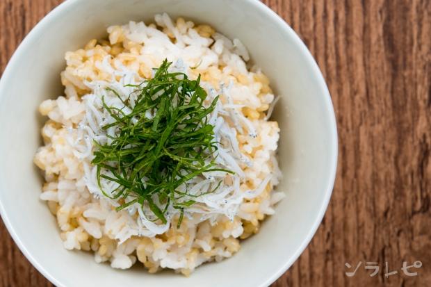 玄米しらすごはん_main2