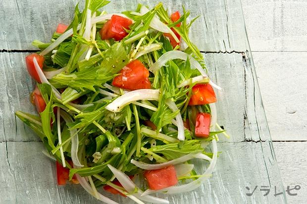 水菜とトマトのサラダ_main2