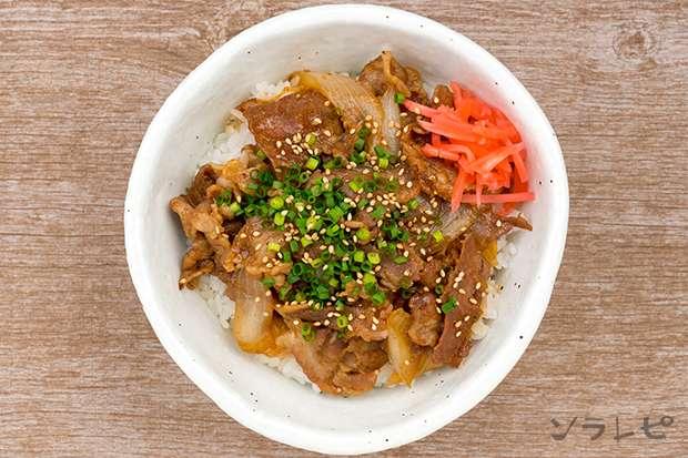 定番豚丼_main2